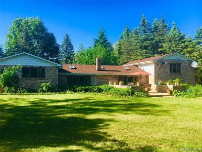 Oakland County Single Family Home For Sale: 727 E Romeo Road