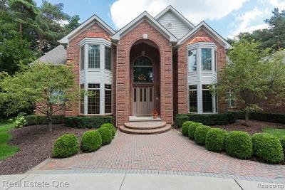 Addison Twp Single Family Home For Sale: 156 Redwood Lane