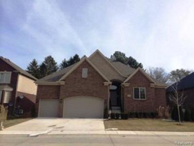 Washington Twp Single Family Home For Sale: 62917 Franklin Park Drive