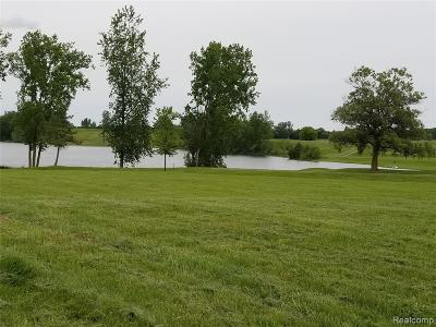 Washington Twp Residential Lots & Land For Sale: 6007 31 Mile