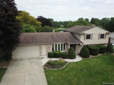 Shelby Twp Single Family Home For Sale: 53376 Whitby Way