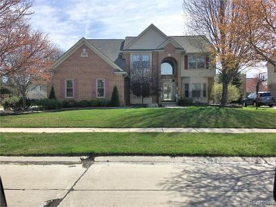 Novi Single Family Home For Sale: 45604 Addington Lane