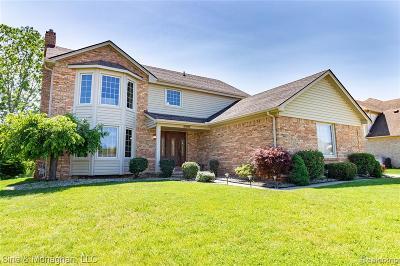 Macomb Twp Single Family Home For Sale: 53092 Freda Drive