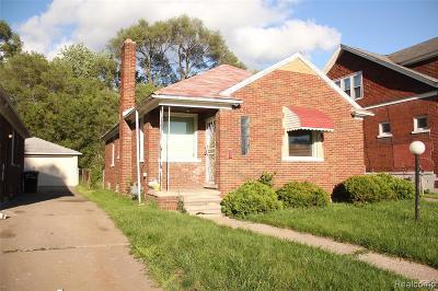 Detroit Single Family Home For Sale: 19690 E Mitchell St Street NE