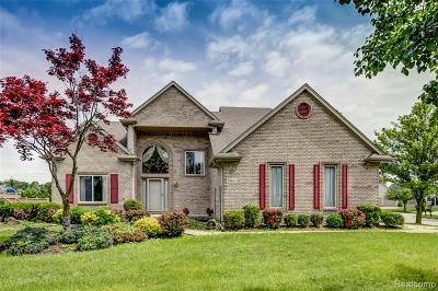 Clinton Twp Single Family Home For Sale: 19801 Woodview Drive