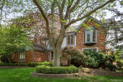 Rochester Hills Single Family Home For Sale: 450 Timberline Drive