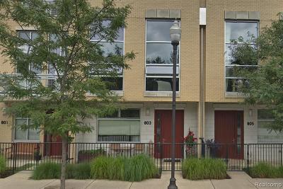 Royal Oak Condo/Townhouse For Sale: 803 E 4th Street