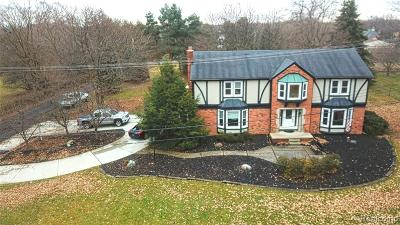 NORTHVILLE Single Family Home For Sale: 46811 7 Mile Road