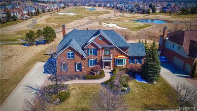 NORTHVILLE Single Family Home For Sale: 46046 Tournament Dr