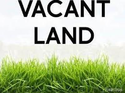 Lincoln Park Residential Lots & Land For Sale: 2040 Morris Avenue