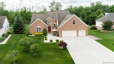 Grand Blanc Single Family Home For Sale: 5136 Rolling Hills Drive