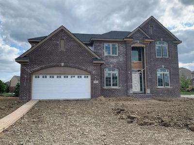 CANTON Single Family Home For Sale: 50243 Amberwood Road