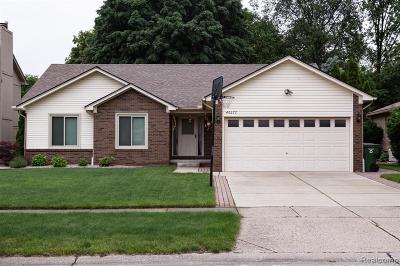 Shelby Twp Single Family Home For Sale: 46677 Springhill Drive