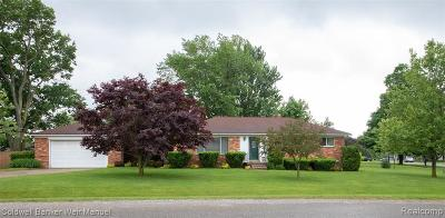 Oxford, Oxford Twp, Oxford Vlg Single Family Home For Sale: 111 Teelin Drive