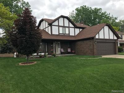 Clinton Twp Single Family Home For Sale: 44249 Terricar Lane