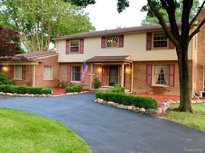 Grosse Ile Twp Single Family Home For Sale: 9671 Island Drive