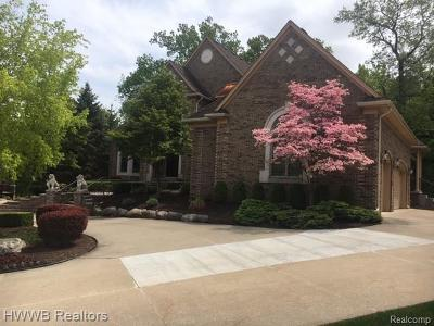 Rochester Hills MI Single Family Home For Sale: $1,199,000