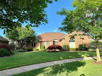 Shelby Twp Single Family Home For Sale: 47334 Circle Crest Drive