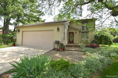 Beverly Hills Single Family Home For Sale: 31820 Allerton Drive