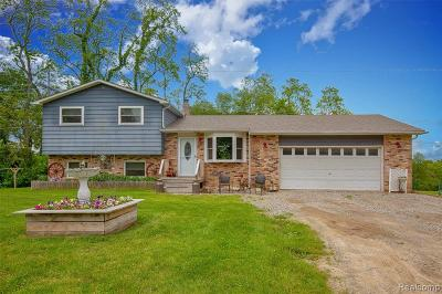 Oakland County Single Family Home For Sale: 650 Munger Rd