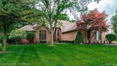 Farmington Hills Single Family Home For Sale: 27227 Hampstead Boulevard