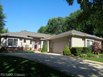 Highland Twp Single Family Home For Sale: 3335 Woodruff Meadows Ct Court