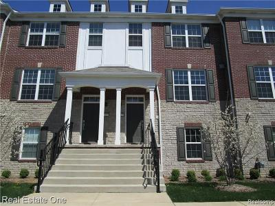 Novi Condo/Townhouse For Sale: 44639 Ellery Lane