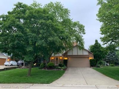 Novi Single Family Home For Sale: 44820 Ford Way Drive