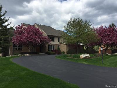 Bloomfield Twp Single Family Home For Sale: 3734 Wabeek Lake Drive W
