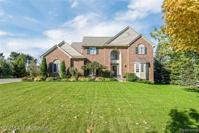 Oakland Twp Single Family Home For Sale: 4040 Norwich Court