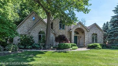 Novi Single Family Home For Sale: 47973 Andover Drive