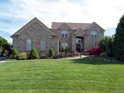 Oakland Twp Single Family Home For Sale: 4640 Chatford Court