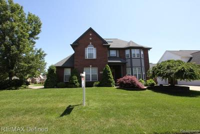 STERLING HEIGHTS Single Family Home For Sale: 44302 La Domain Drive