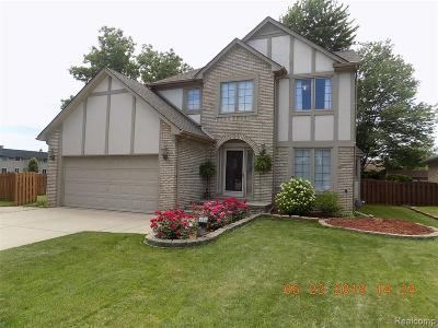 STERLING HEIGHTS Single Family Home For Sale: 35005 Vito Drive