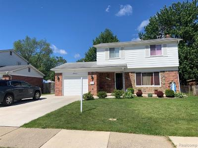 Livonia, Redford Twp, Farmington Hills, Farmington, Southfield Single Family Home For Sale: 29641 W Marshall Street