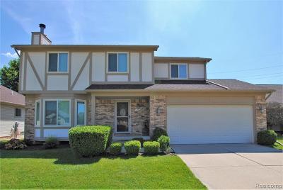 MACOMB Single Family Home For Sale: 46792 Oak Pointe Drive