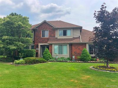Sterling Heights Single Family Home For Sale: 35102 Hatherly Court