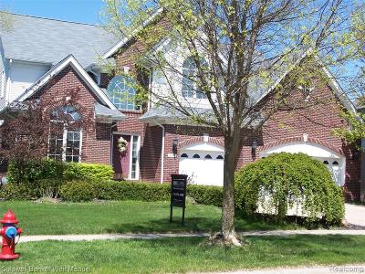 Rochester Single Family Home For Sale: 1259 Tulberry Circle