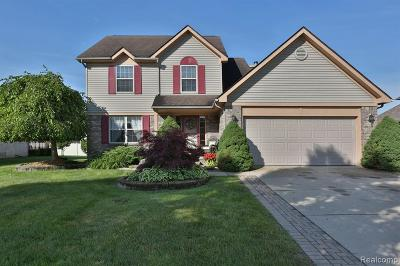 Rockwood Single Family Home For Sale: 20142 Metzger Drive
