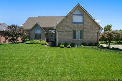 Macomb Twp Single Family Home For Sale: 55512 Rhine Avenue