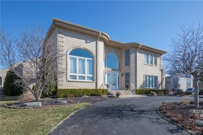 West Bloomfield Twp Single Family Home For Sale: 6967 Apple Blossom Trail