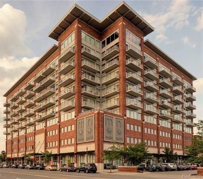 Royal Oak Condo/Townhouse For Sale: 350 N Main Street #811
