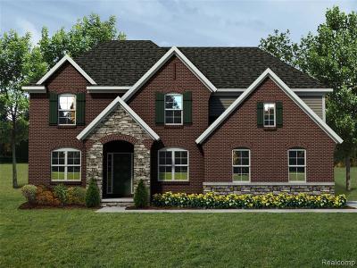 Rochester Hills Single Family Home For Sale: 980 Corbin Road