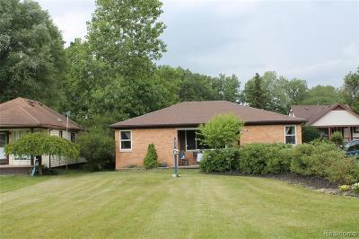 Brownstown Twp Single Family Home For Sale: 26110 King Road