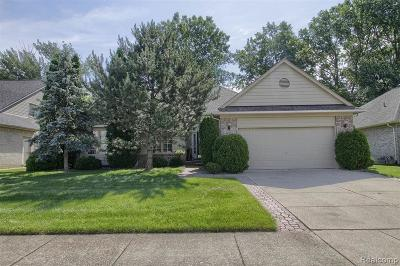 Macomb Twp Single Family Home For Sale: 46724 Springwood Drive