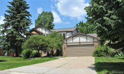 Novi Single Family Home For Sale: 45176 Dunbarton Drive