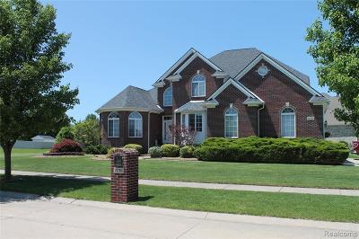 Brownstown Twp Single Family Home For Sale: 20760 Kurtzhals Court E