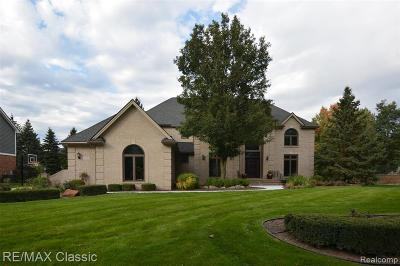Novi Single Family Home For Sale: 47590 Edinborough Lane
