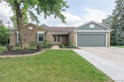 Troy Single Family Home For Sale: 1027 Fountain Drive