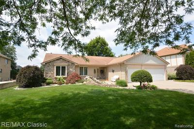 Novi Single Family Home For Sale: 22361 Antler Drive